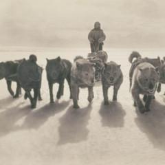Foto 17 de 18 de la galería las-primeras-fotografias-de-la-antartida en Xataka Foto