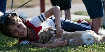 Recomendaciones para padres con niños alérgicos a los animales