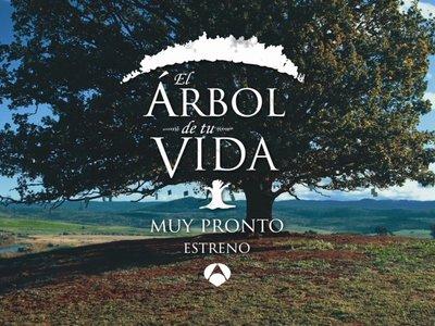 'El árbol de tu vida', así es el regreso de Toñi Moreno a la televisión generalista