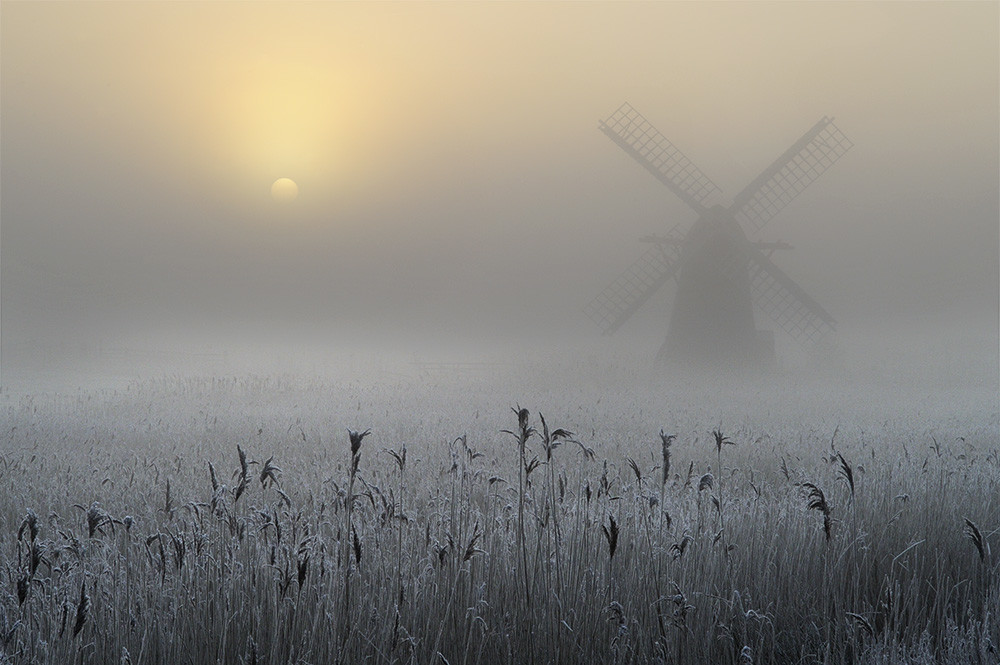 Andrew Bailey Freezing Fog And Hoar Frost