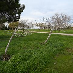 Foto 48 de 62 de la galería galeria-de-muestras-nikon-z6-ii en Xataka Foto