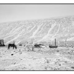 Foto 4 de 10 de la galería leica-m-monochrom-fotos-oficiales en Xataka Foto