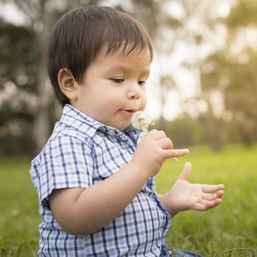 Esta primavera la alergia al polen viene fuerte: cómo reconocer y aliviar los síntomas en los niños