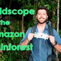 Un vistazo microscópico al Amazonas con Foldscope, el microscopio para smartphones que cuesta un dólar
