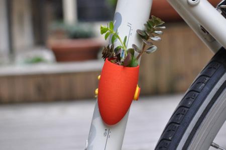 Plantas para bici