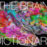 Así reacciona nuestro cerebro a distintas palabras