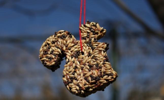 galletas decorativas para pájaros