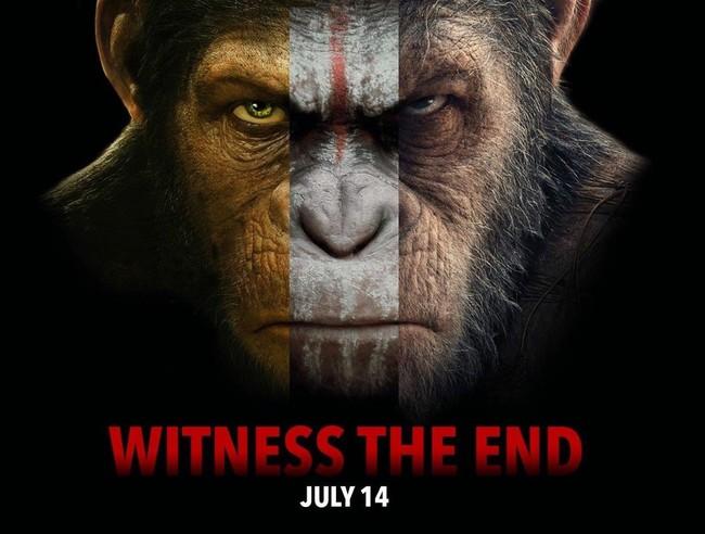 'La guerra del planeta de los simios' no es el final de la saga: Matt Reeves quiere rodar más secuelas