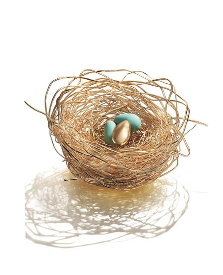 nido de huevos de oro
