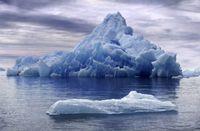 El ecosistema de los icebergs