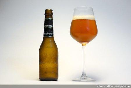 Cata cerveza - cruzcampo gran reserva - copa
