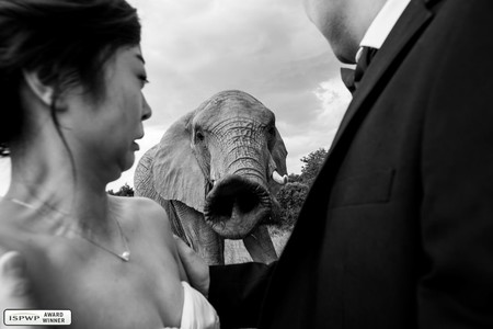 Best Wedding Photography Of 2018 Ispwp Winners 15