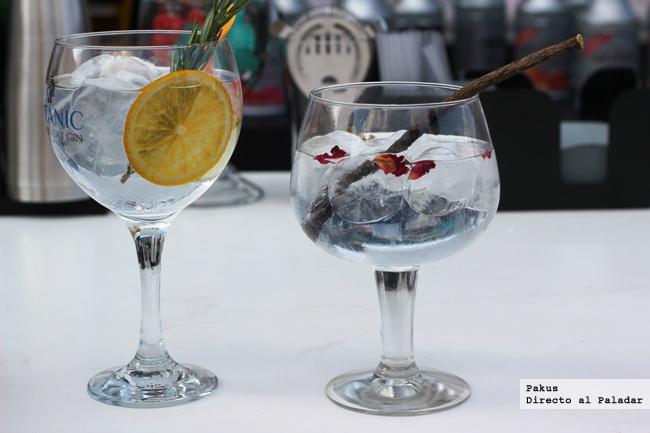 gin tonic show