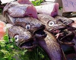 Consumo de pescado en España