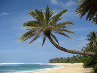 La isla del Presidente Obama