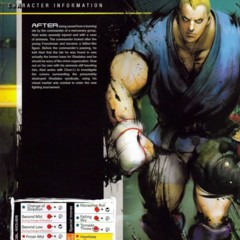 Foto 34 de 39 de la galería street-fighter-iv-manual en Vida Extra
