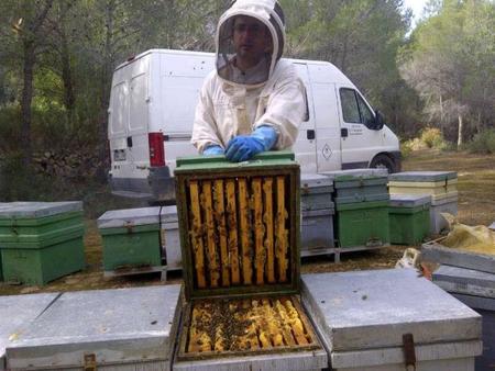 Negocios en la red: miel 2.0