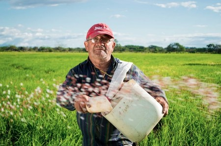 Resiliencia Culinaria: el recetario con causa hecho para ayudar a comunidades en situación de pobreza durante el confinamiento