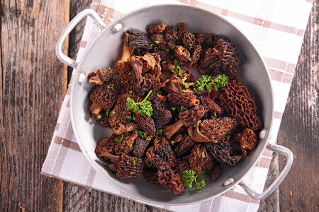 Colmenillas, la exquisita seta de primavera: características, variedades y cómo cocinar el hongo más codiciado por los chefs
