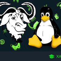 Las mejores aplicaciones y herramientas gratis para GNU/Linux en 2020