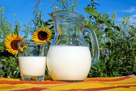 ¿Los productos lácteos siempre han sido parte de nuestra dieta?