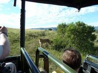 El viaje de...  Isabel y Javier a Sudáfrica