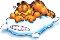 Decorar bien para dormir mejor: Elegir la almohada más adecuada a tus necesidades