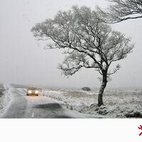El frío en los coches diésel: cómo evitar que el gasóleo se congele en el depósito