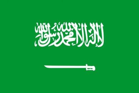 Arabia Saudí protesta por el dominio .gay