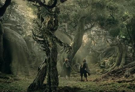 La vida está tan mal que hasta los árboles han empezado a emigrar al oeste