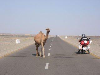 Arabia Saudi prohibe las motos