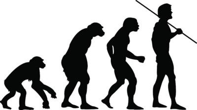 Movimientos primarios del ser humano: los seis ejercicios más funcionales y efectivos