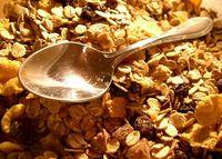 Los antinutrientes: ¿qué son y cómo reducir su efecto en la cocina?