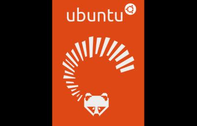 Ubuntu 13.04 Raring Ringtail y derivados, versión final para todos