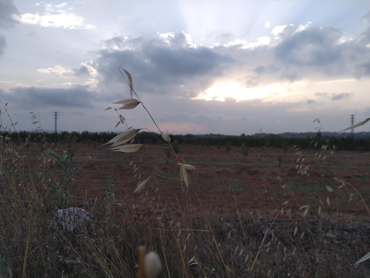 Foto de nokia 5, fotografías (20/22)