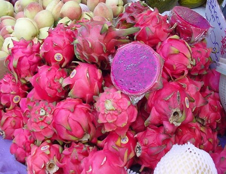 pitahaya rosa