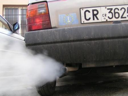 Diesel Contaminacion Infertilidad