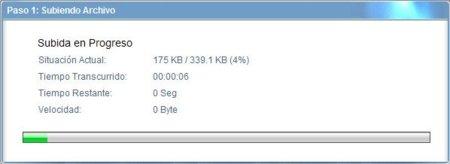detalle-carga-archivo-virscan