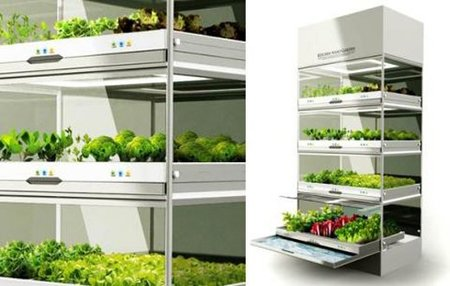 kitchen nano garden 4