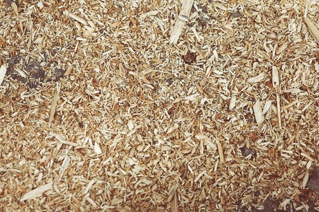 Shredded Wood 407024 960 720