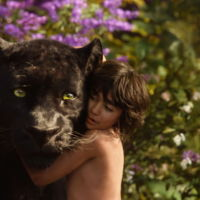 'El libro de la selva': Disney ya prepara la segunda parte con Jon Favreau