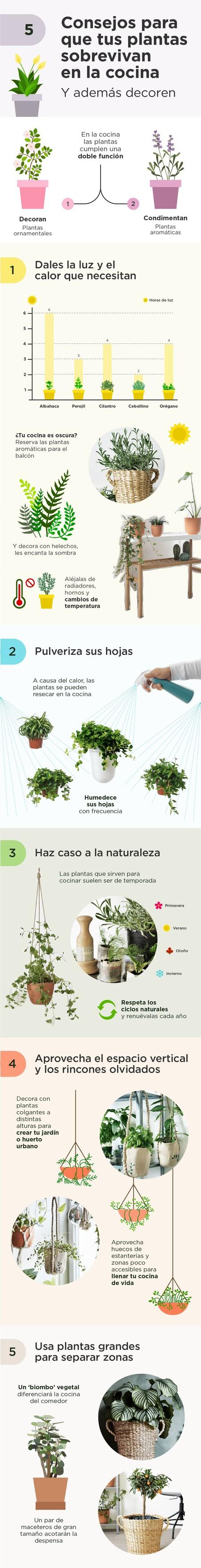 Infografia Ikea Plantas En La Cocina Min