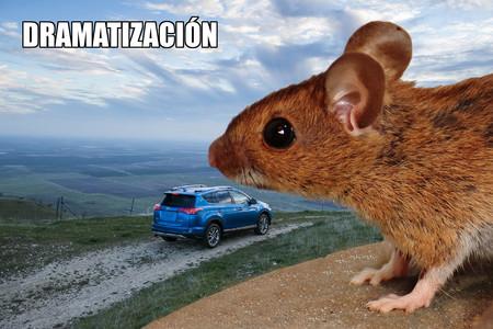 Imagen ficticia de un ratón y un coche