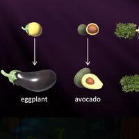 Las frutas y verduras de hoy no se parecen en nada a las de hace siglos. Este gráfico lo ilustra