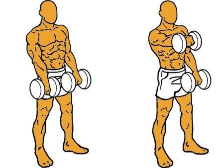 Aperturas con mancuernas hombro