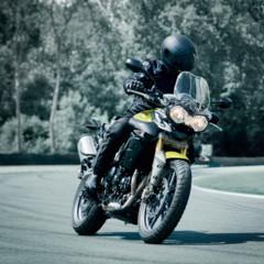 Foto 10 de 37 de la galería triumph-tiger-800-primera-galeria-completa-del-modelo en Motorpasion Moto