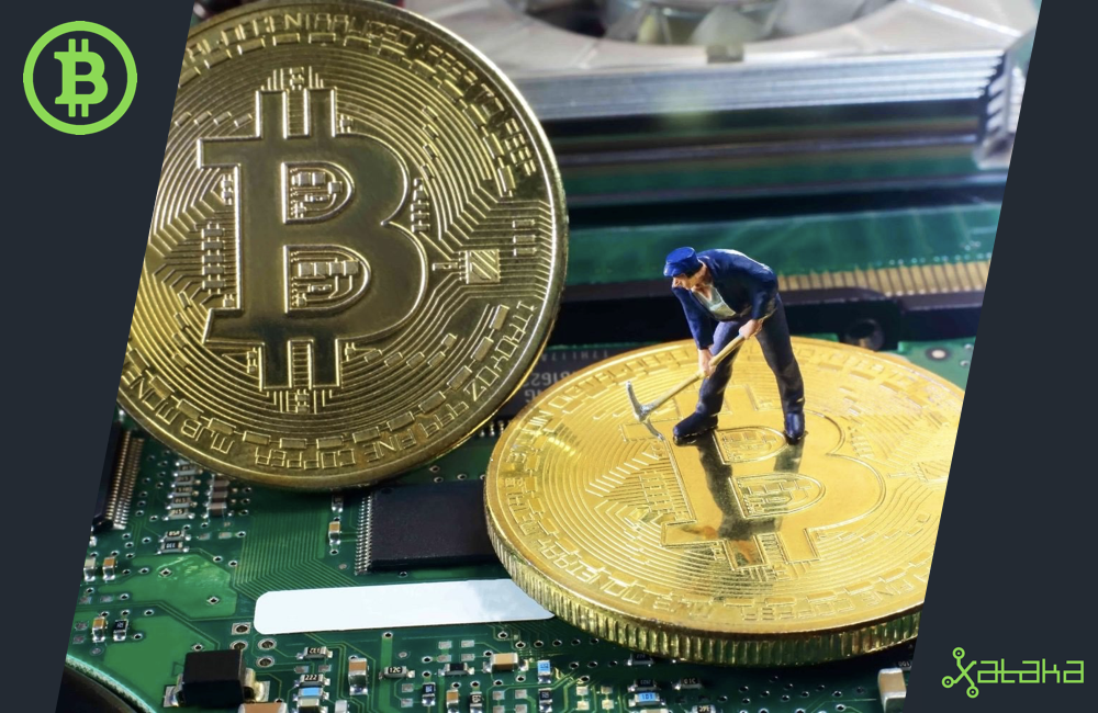 Ganar dinero minado bitcoins 2021 academy awards betting sheet for kentucky