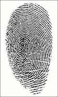 ¿Cómo se sabe que todas las huellas dactilares son diferentes en cada persona?