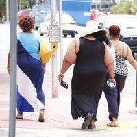 Nuestros genes y el ambiente obesogénico: la principal causa de la pandemia de obesidad