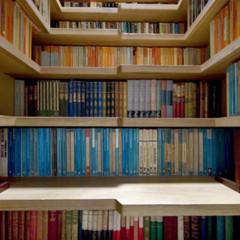 Foto 2 de 4 de la galería libreria en Decoesfera
